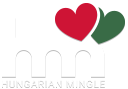 thehungarianmingle.com